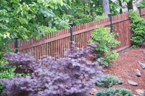 Delco Fencing Custom Wood Fence Built And Complete In A Small Backyard With Lots Of Trees And Bushes